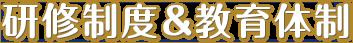 サン共同税理士法人研修制度&教育体制